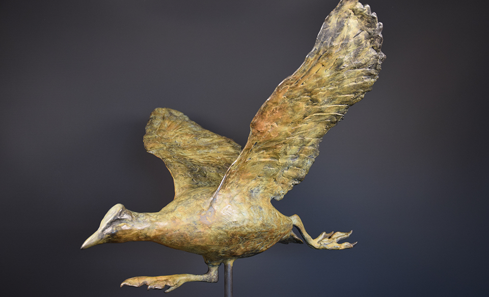 Meerkoet in brons - links 3