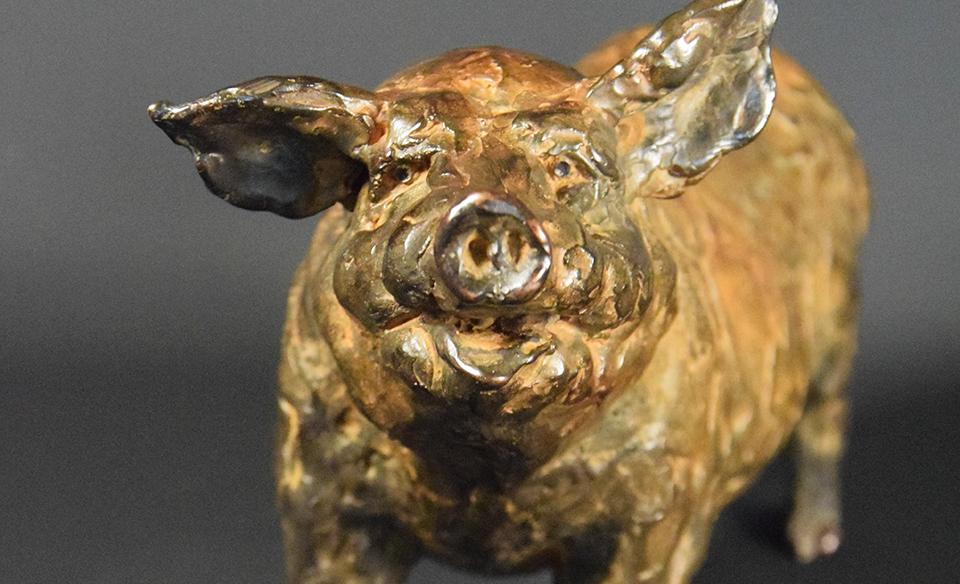 Vrolijk varken in brons - voorblad