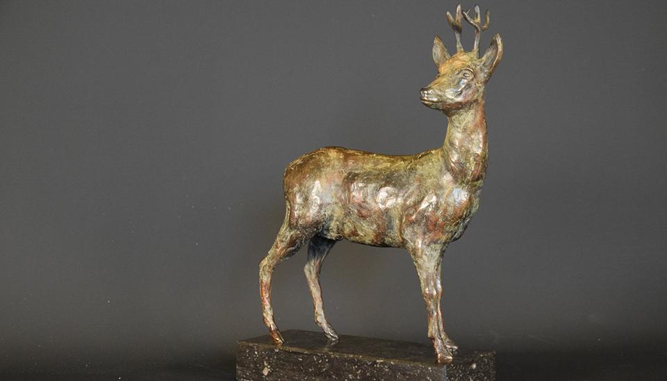 Reebok in brons - voorblad