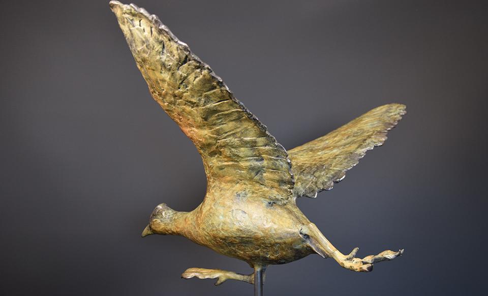 Meerkoet in brons - links