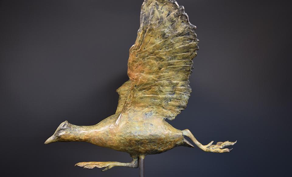 Meerkoet in brons - links 2