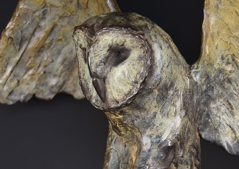 Uil-in-brons-kop
