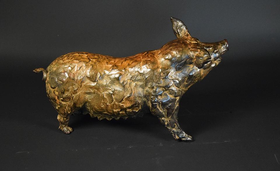 Varken in brons rug