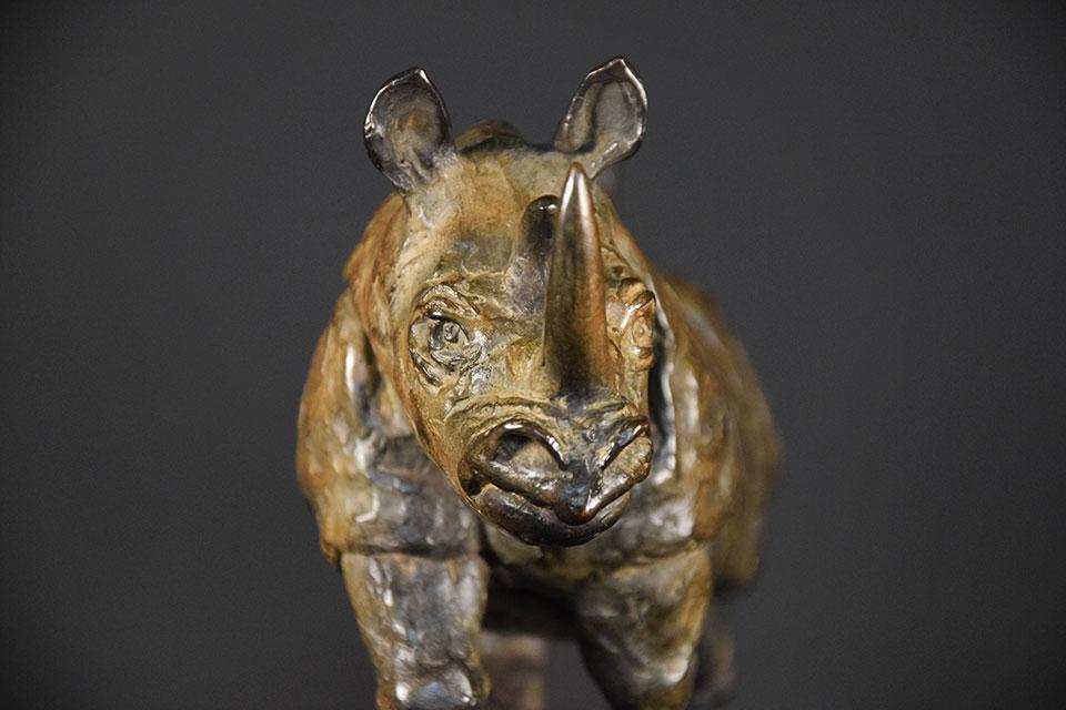 neushoorn-in-brons-voorkant